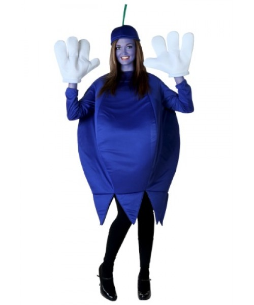 Womens Blueberry Plus Size Costume