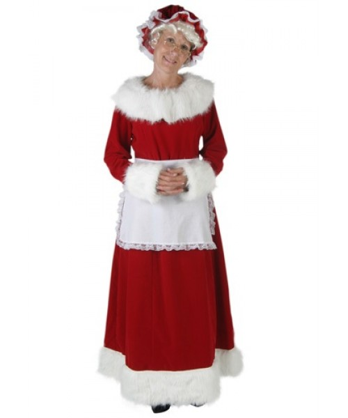 Womens Mrs Claus Plus Size Costume