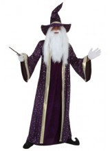 Mens Wizard Plus Size Costume