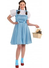 Wizard Of Oz Dorothy Womens Plus Size Costume